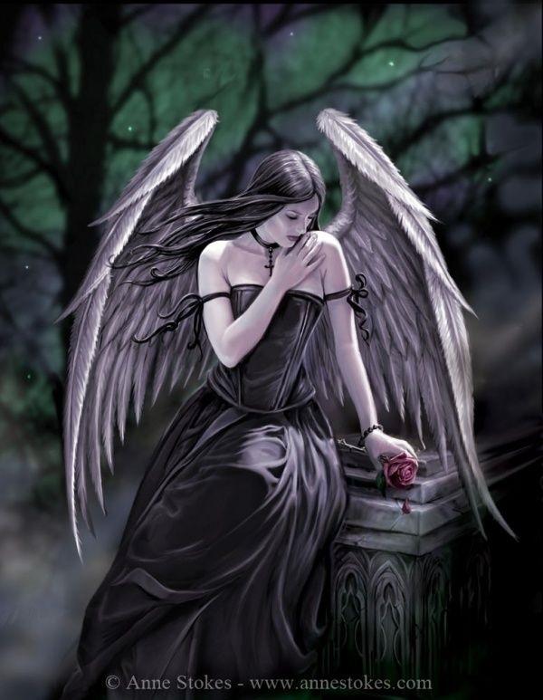 картинки ангел роза мистика множество абразивов, среди