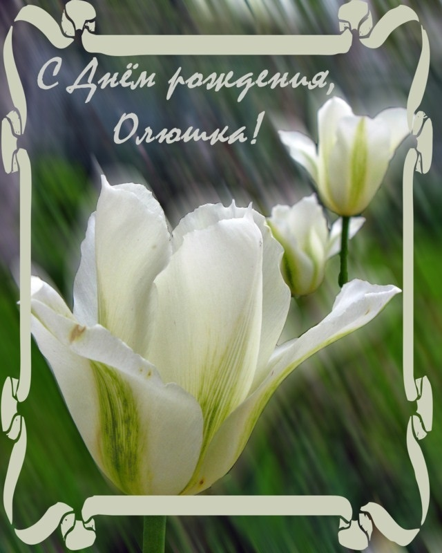 Открытка олечка с днем рождения тебя, открытки февраля