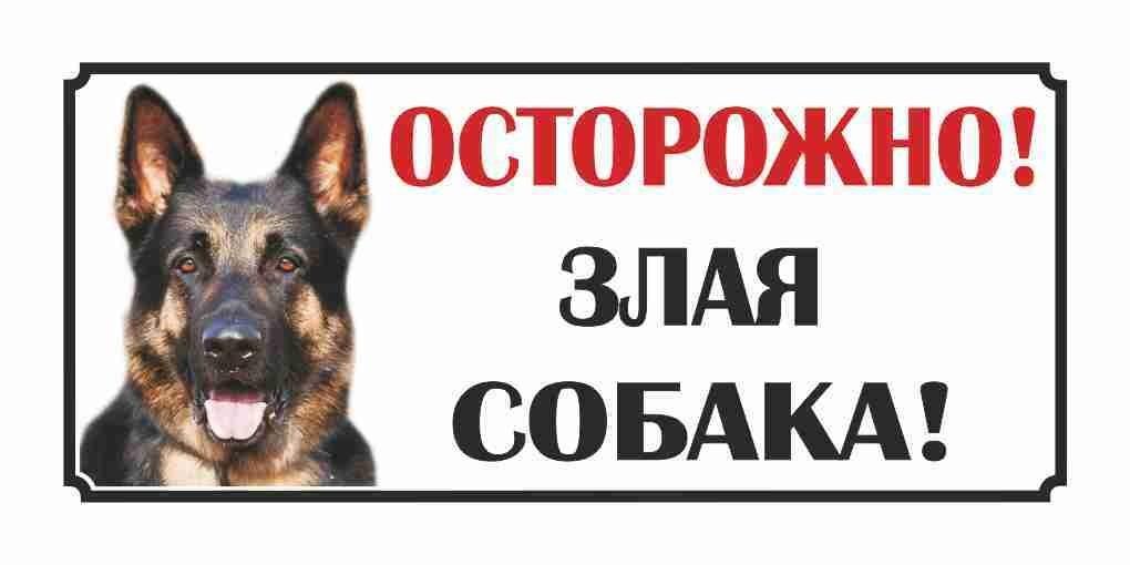 Осторожно злая собака картинки прикольные