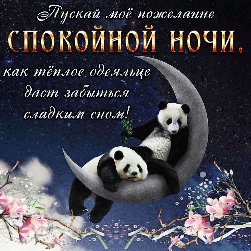 Спокойной ночи картинки и открытки, приколы обезьяны