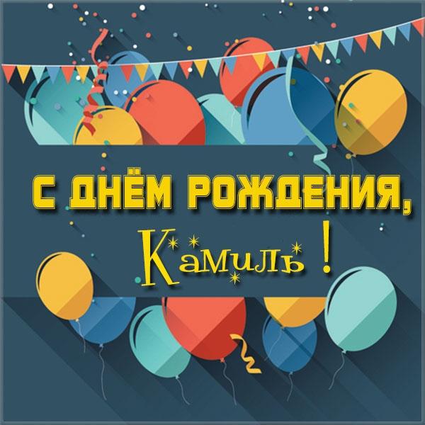 Поздравление с днем рождения для камиля
