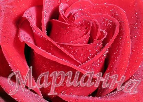 С днем рождения картинки девушке с пожеланиями красивые с надписями марианна