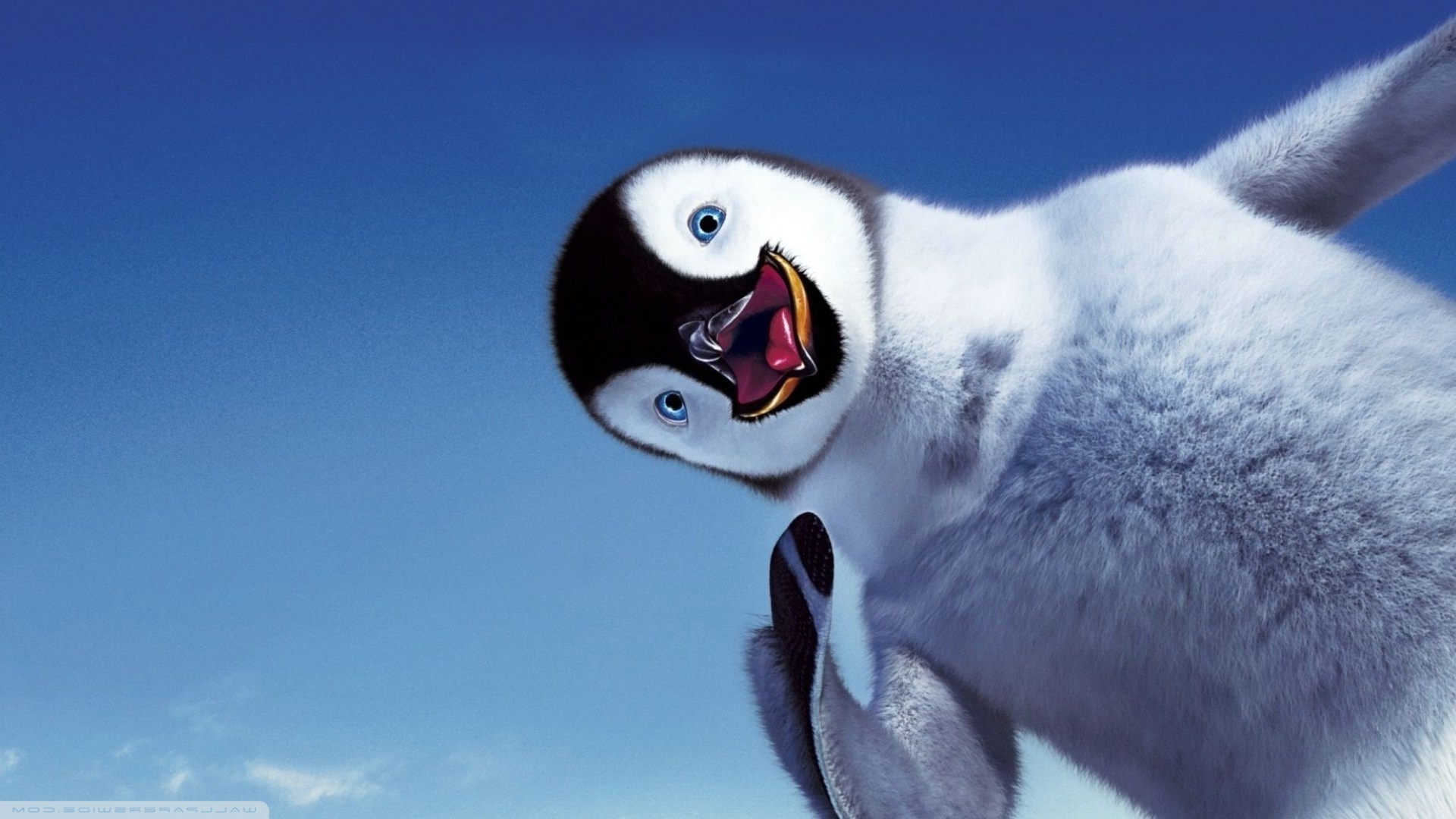 Картинка пингвины на рабочий стол