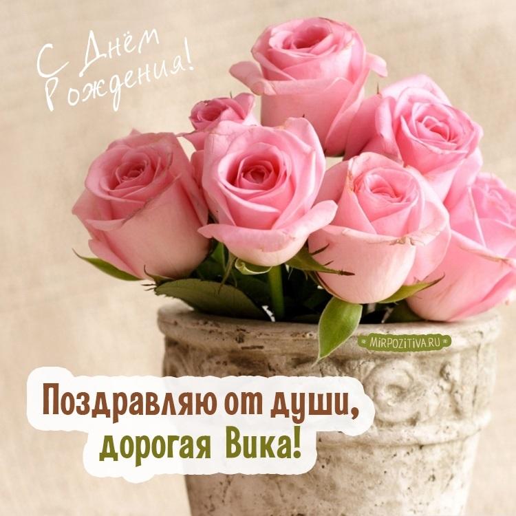 Прикольные картинки с цветами с пожеланиями, картинки разном