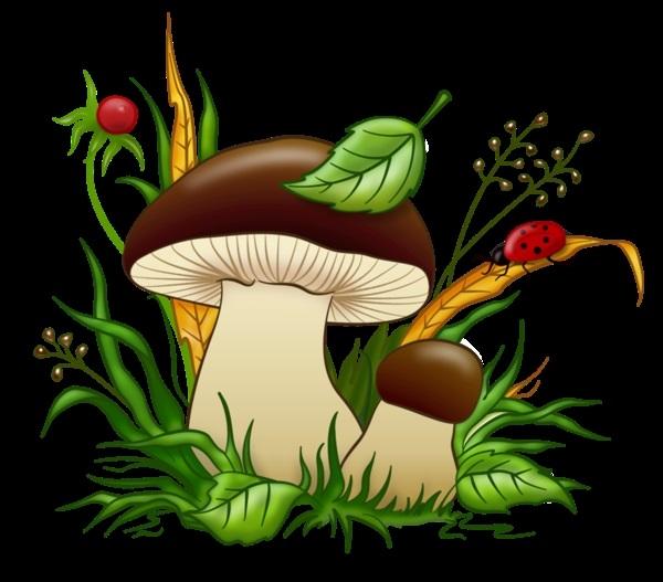 Открытка грибочки супер, своими