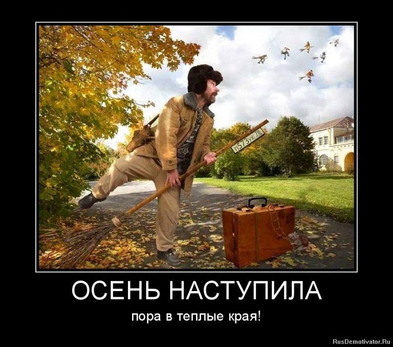 картинка с приколами про осень отлично подойдет ученицам