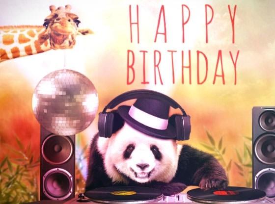 поздравления звукорежиссеру с днем рождения животные потихоньку входят