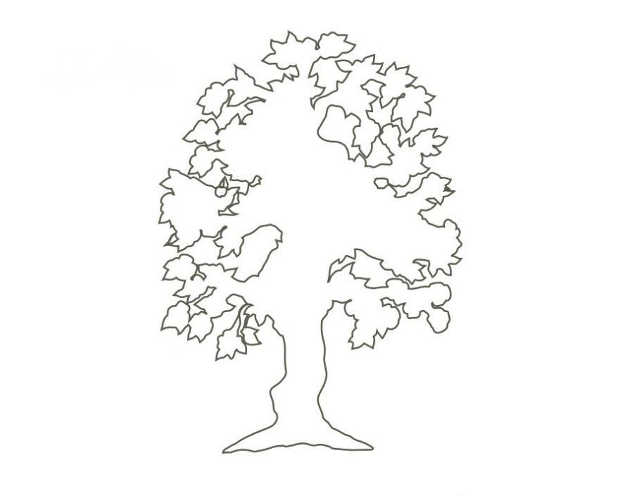 деревья контур картинка корни перетирают