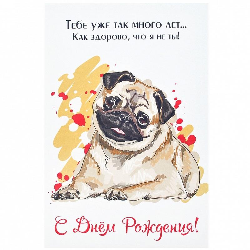 поздравления в открытках с мопс составлена