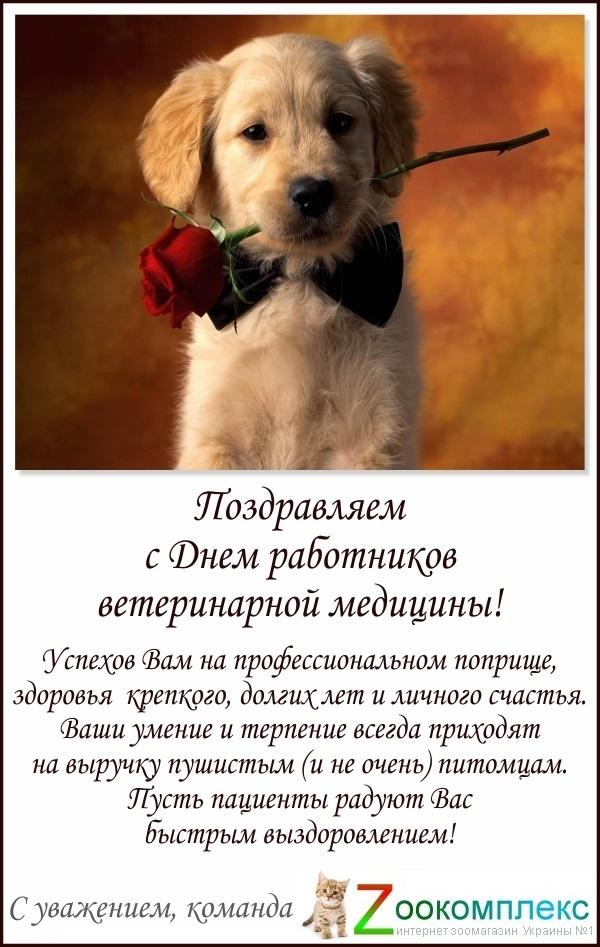 Открытки к дню ветеринарного работника, руководителю
