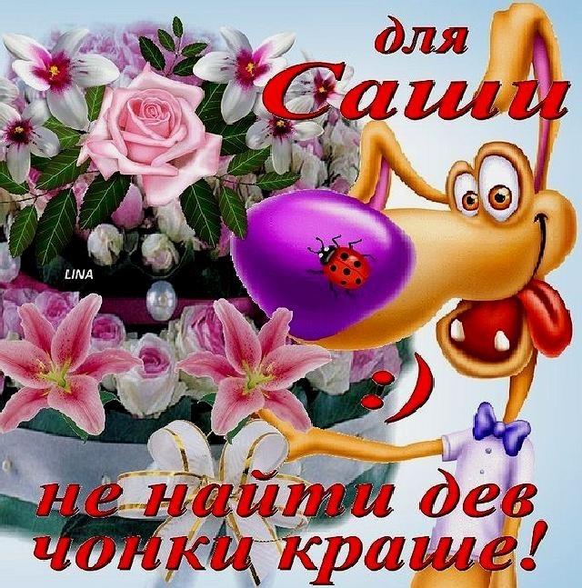 С днем рождения александра открытка девушке