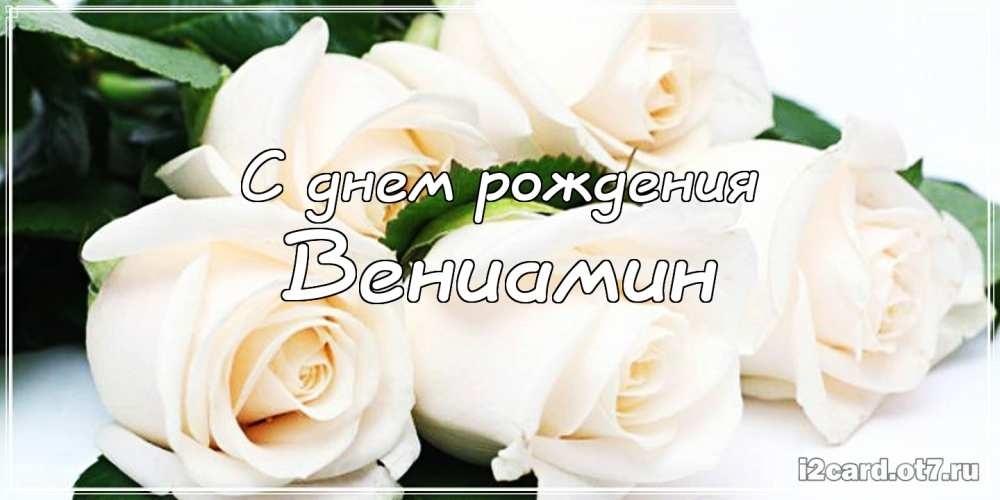 Белые розы картинка с днем рождения