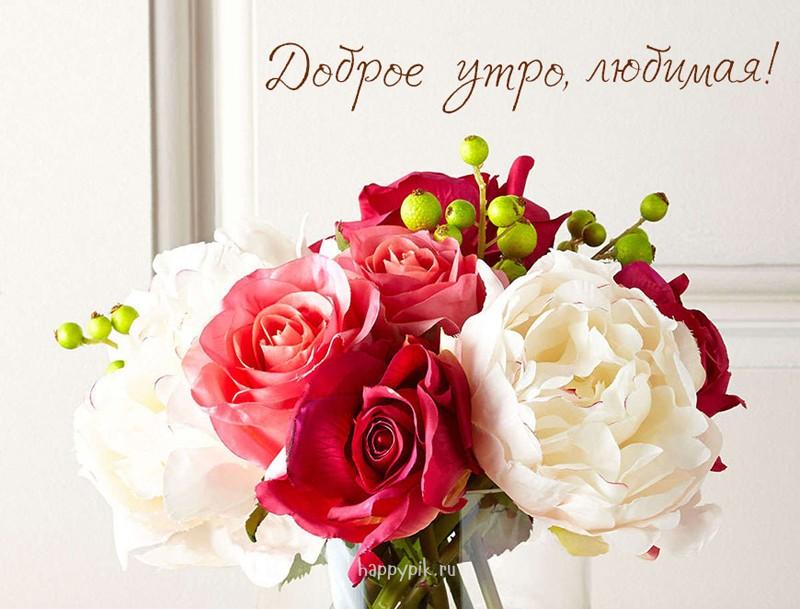 Смешная, открытки доброе утро для любимой женщины