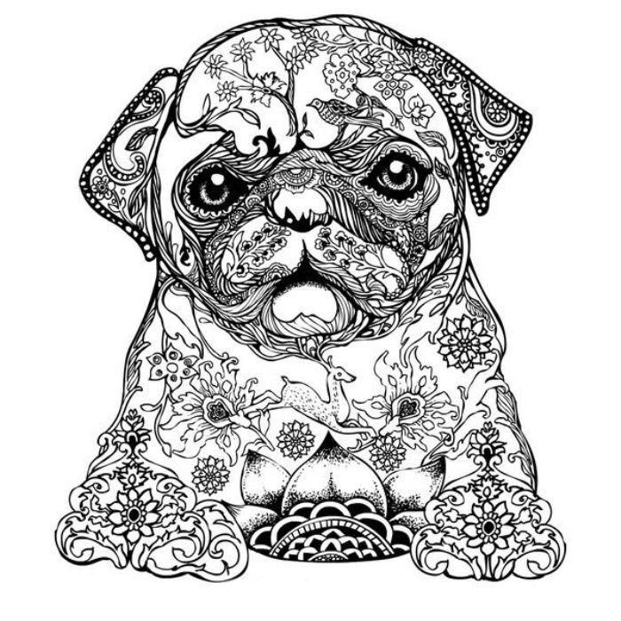 Собака раскраска антистресс - подборка