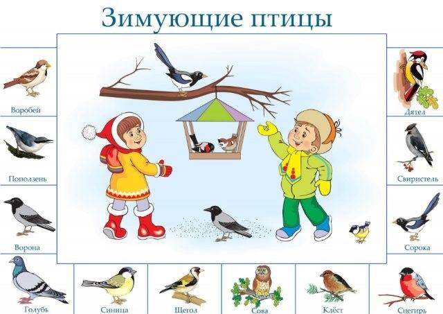 Уроки рисования для детей: рисуем красивую птицу | 453x640