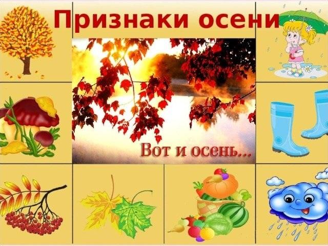 Алгоритм осень в картинках для детского сада, открытки летием