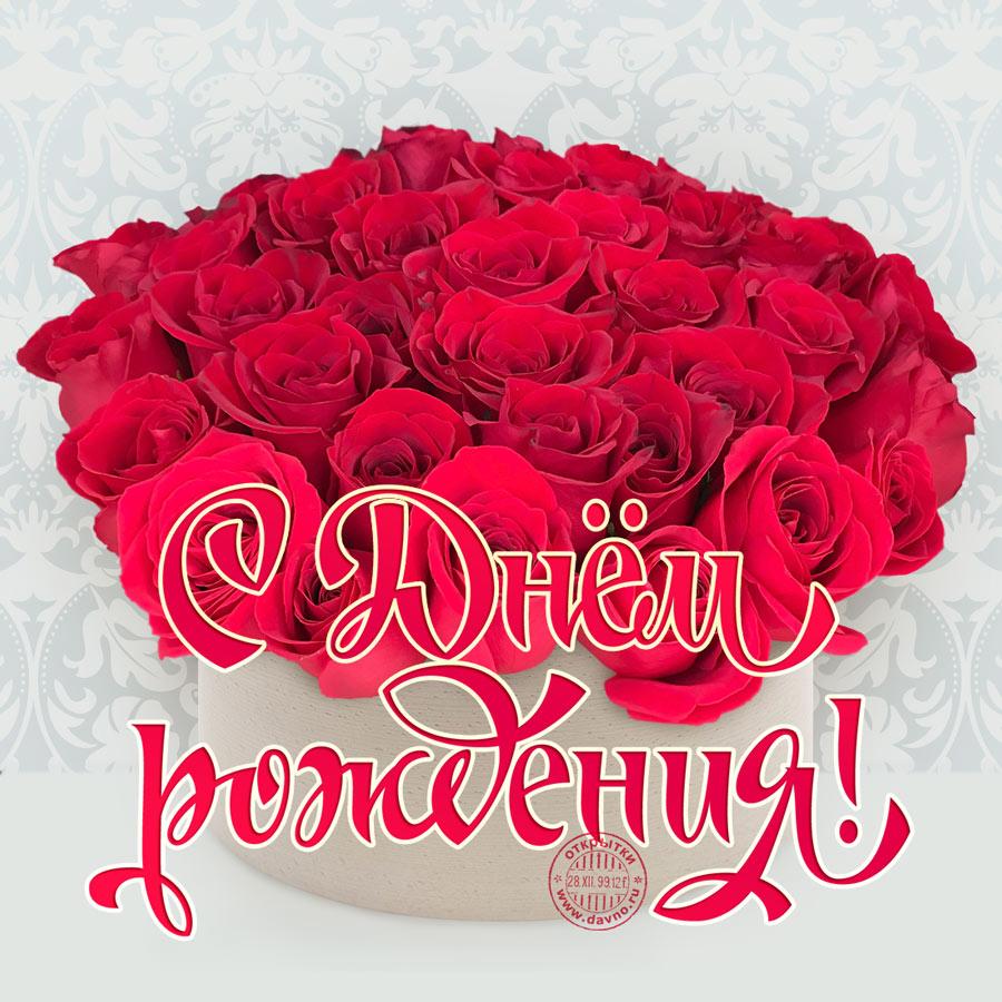 Прикольные открытки с днем рождения с розами