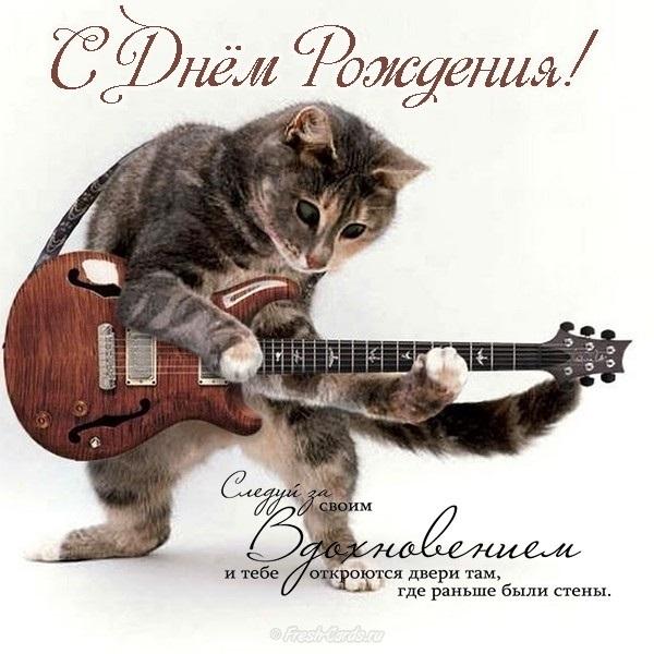 Котик с днем рождения открытка женщине, поздравления беременной