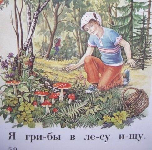 Олесе, кто собирает открытки с грибами