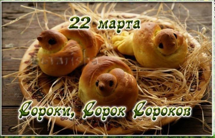 Картинки к 22 марта жаворонки, днем