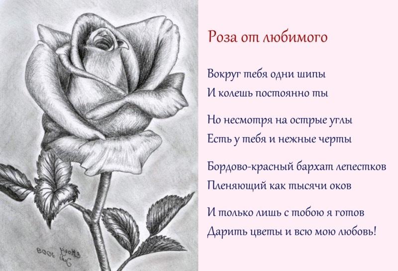 Поздравление, картинки про любовь нарисованные с надписями