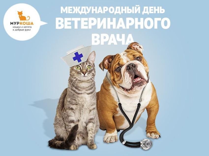 день ветеринарного работника россии картинка красный дракон