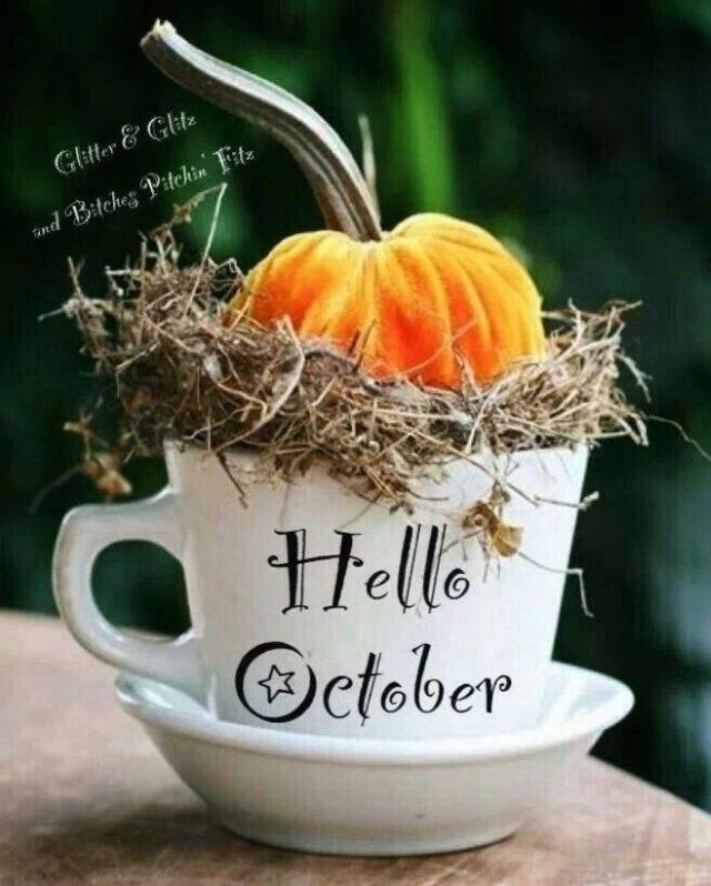 Месяца, октябрь картинки прикольные