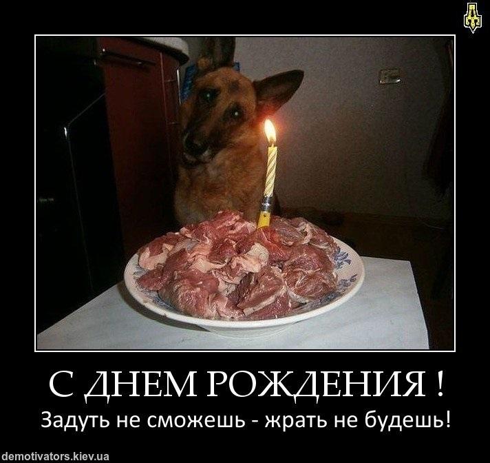 Прикольные картинки с днем рождения демотиватор