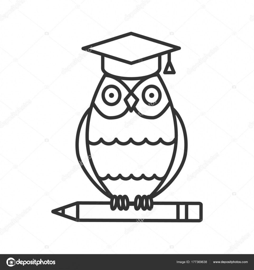 Рисунок карандашом сова с книгой
