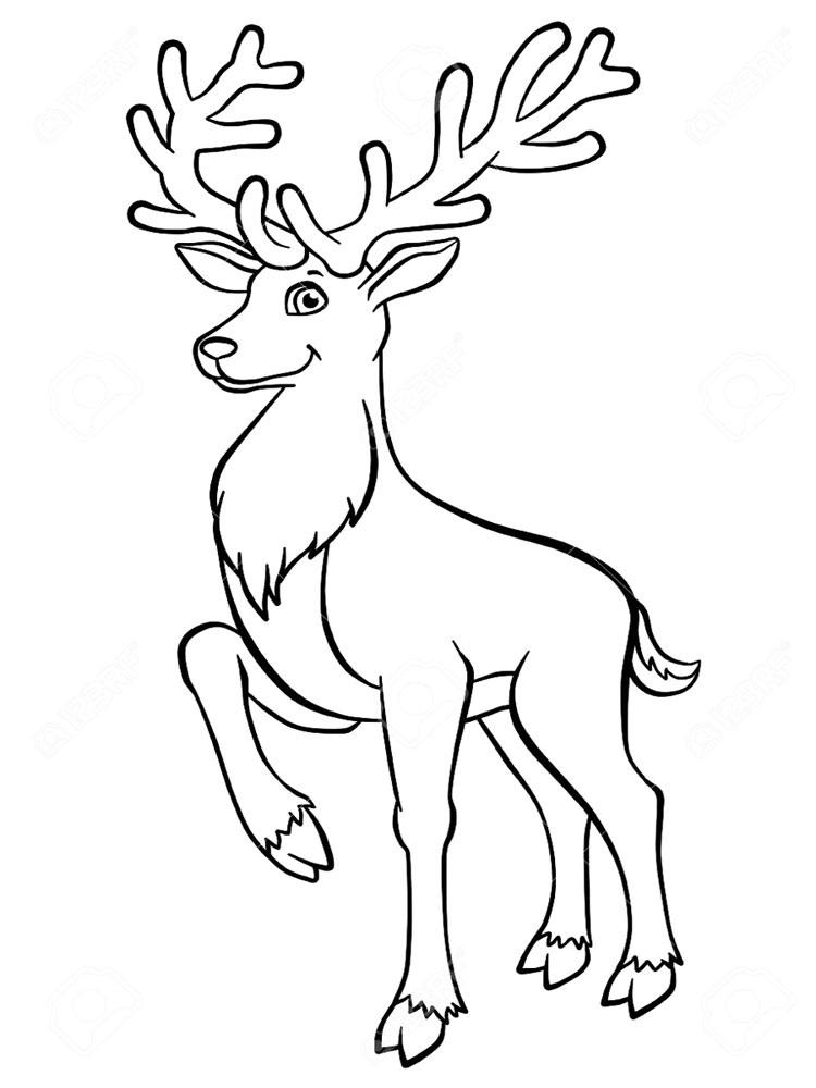 Картинки раскраски оленя для мальчиков - красивые